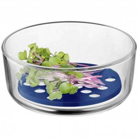 WMF Top Serve Storage and Serving Container with Drainage Grille - Mimocook