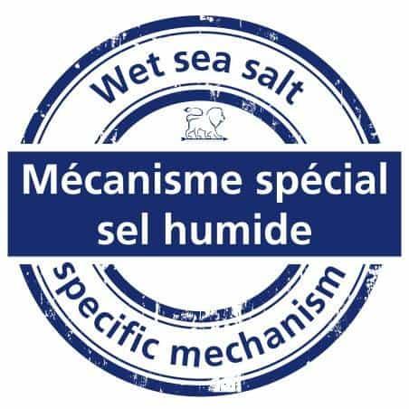Peugeot Nancy Wet Sea Salt Mill - Mimocook