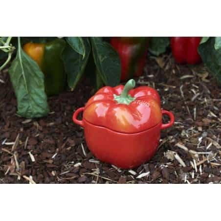 Staub ceramic petite pepper cocotte - Mimocook