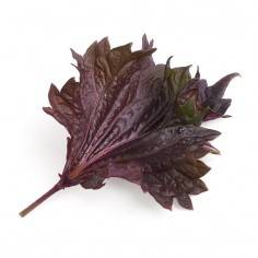 Véritable Organic Red Shiso Lingot