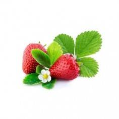 Véritable Wild Red Strawberry Lingot