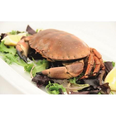 Kitchen Craft Seafood Dining Set - Mimocook